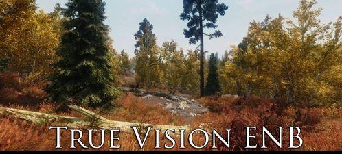 True Vision ENB